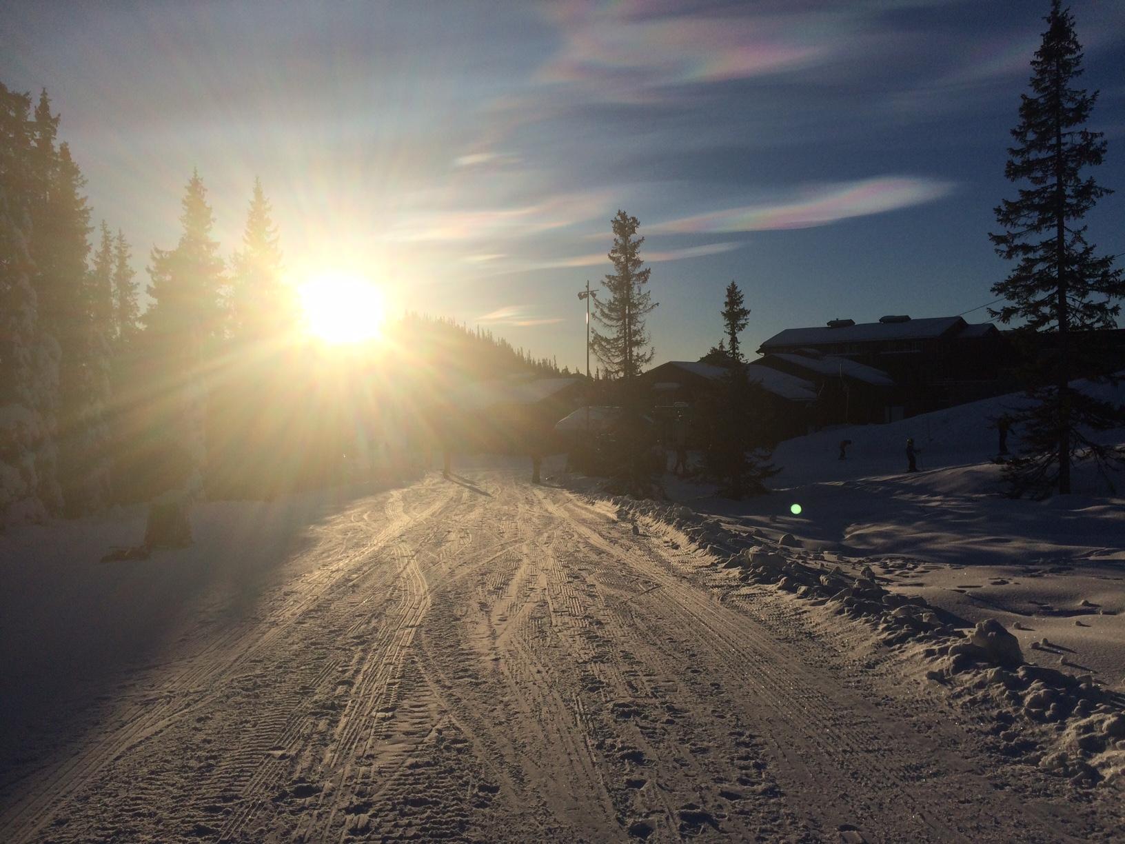 sne-norefjell-youblush