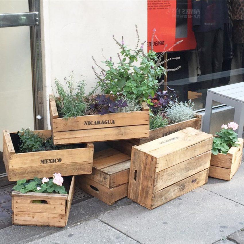 savingthisideaformyhouse greenplants whyredcopenhagenstore