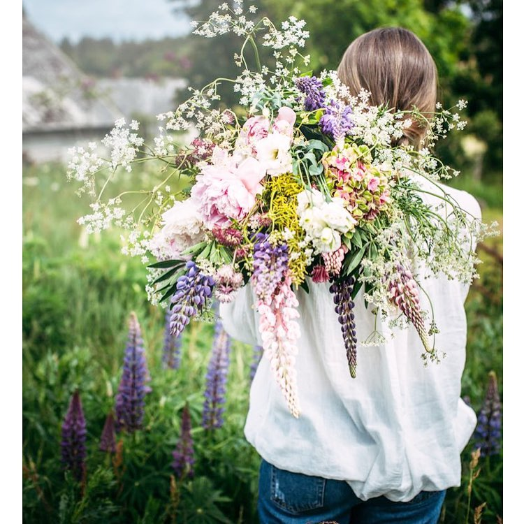 Are you ready for tonight? sankthans midsommar midsummer flowers